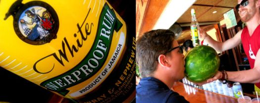 Appleton Brunch collage 4