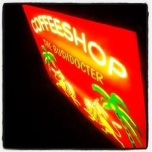 Amsterdam's Coffeeshop The Bushdocter logo