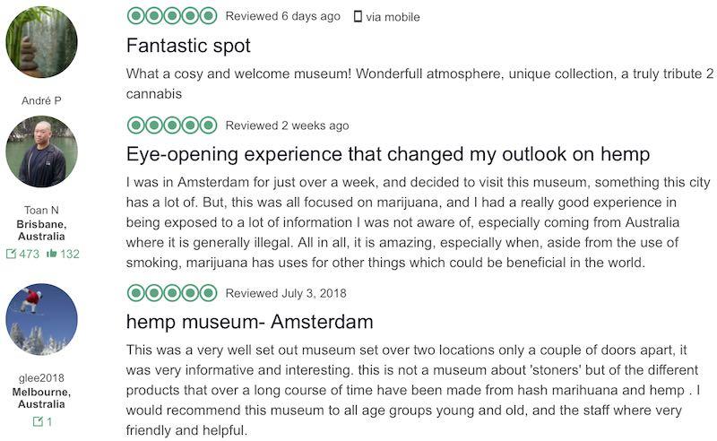Hash Marihuana and Hemp Museum Tripadvisor reviews