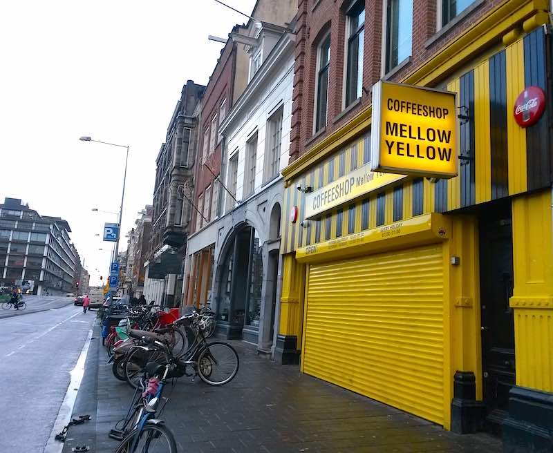 Amsterdam Cannabis Coffee Shops Closing