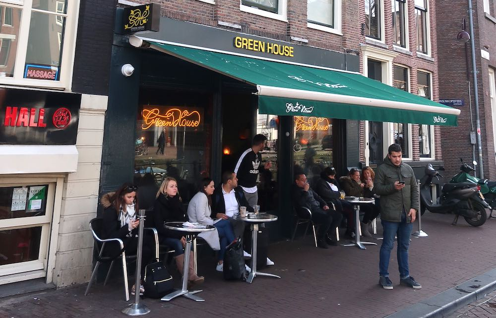 greenhouse coffeeshop amsterdam