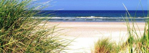 blog-12072012_top5_beaches