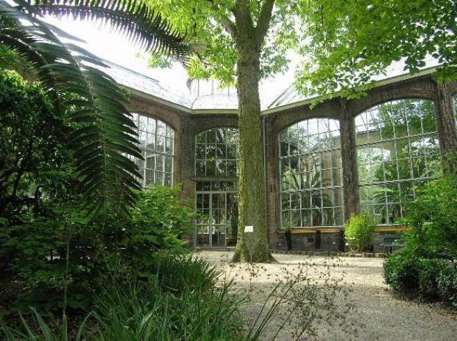 hortus_botanicus_amsterdam