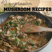 40 vegetarian mushroom recipes