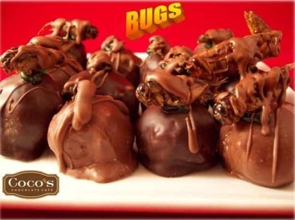 chocolate covered bugs, October Food Holidays