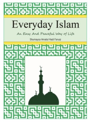 aMuslima Book Review: Everyday Islam  Book Review: Everyday Islam Screen Shot 2015 02 03 at 7