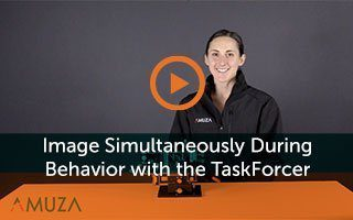 Image simultaneously during behavior with the TaskForcer