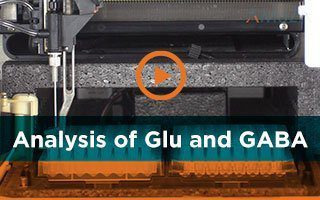 Simultaneous Analysis of Glutamate and GABA for Neuroscience Applications