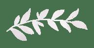 leaf divider-04
