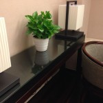 Another plant in my hotel room