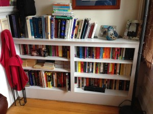 One of the bookshelves in my apartment--boy, will this be fun to move someday.