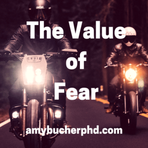The Value of Fear