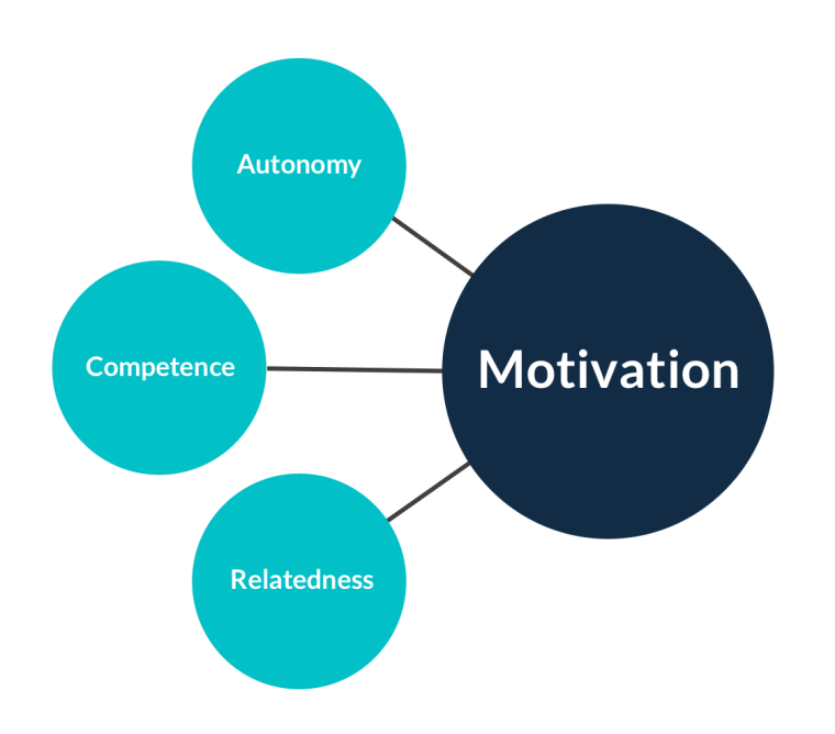 Basic psychological needs include autonomy, competence, and relatedness, and are precursors of motivation