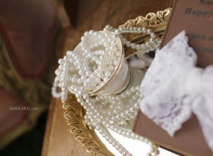dallas wedding photographer nicole's white rock lake bridals (7)