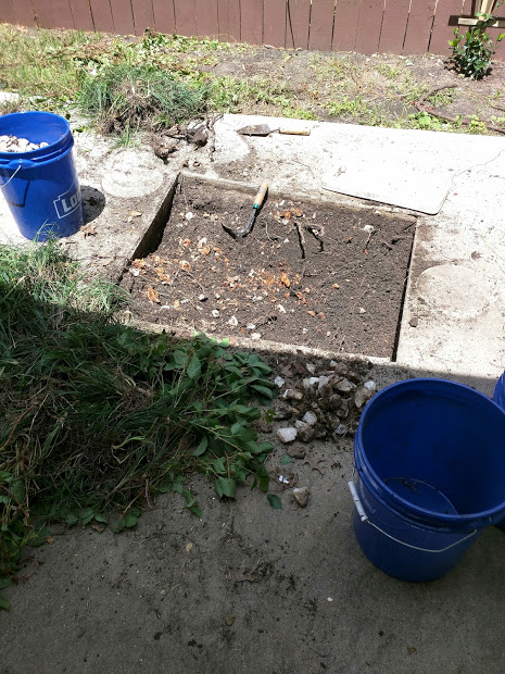 Meditation Pond Progress