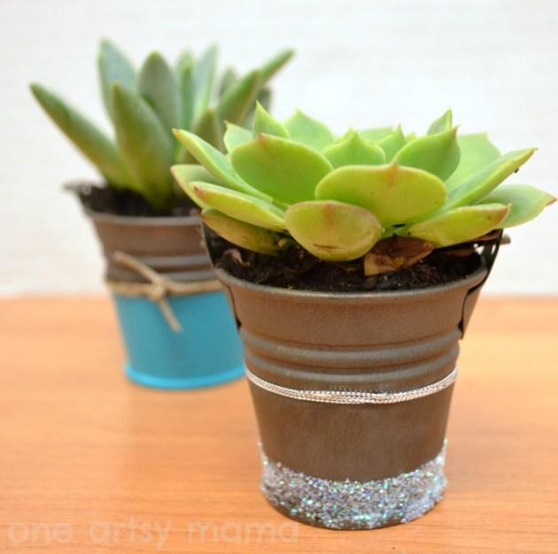 succulents7