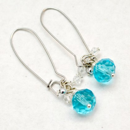 Dangle Crystal Earrings