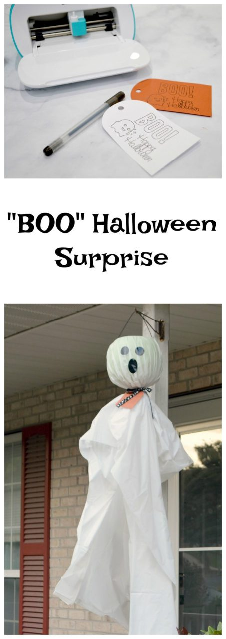 """BOO"" Halloween Surprise"