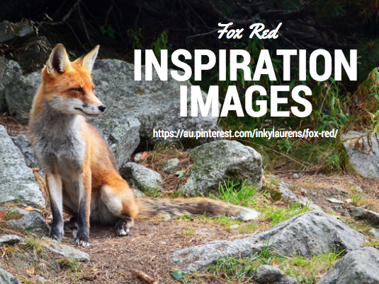 Fox Red Inspiration Images