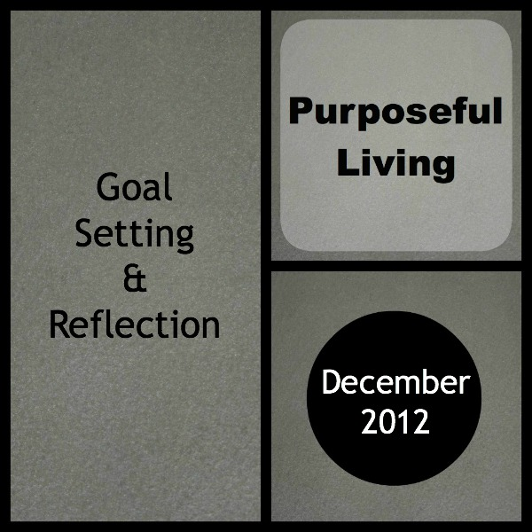 Goal Setting and Reflection December 2012