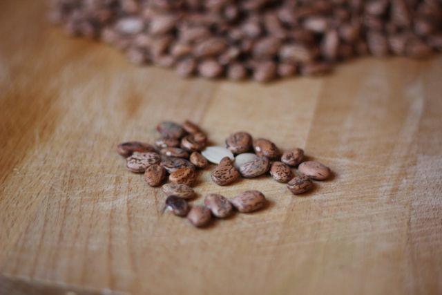 reject beans