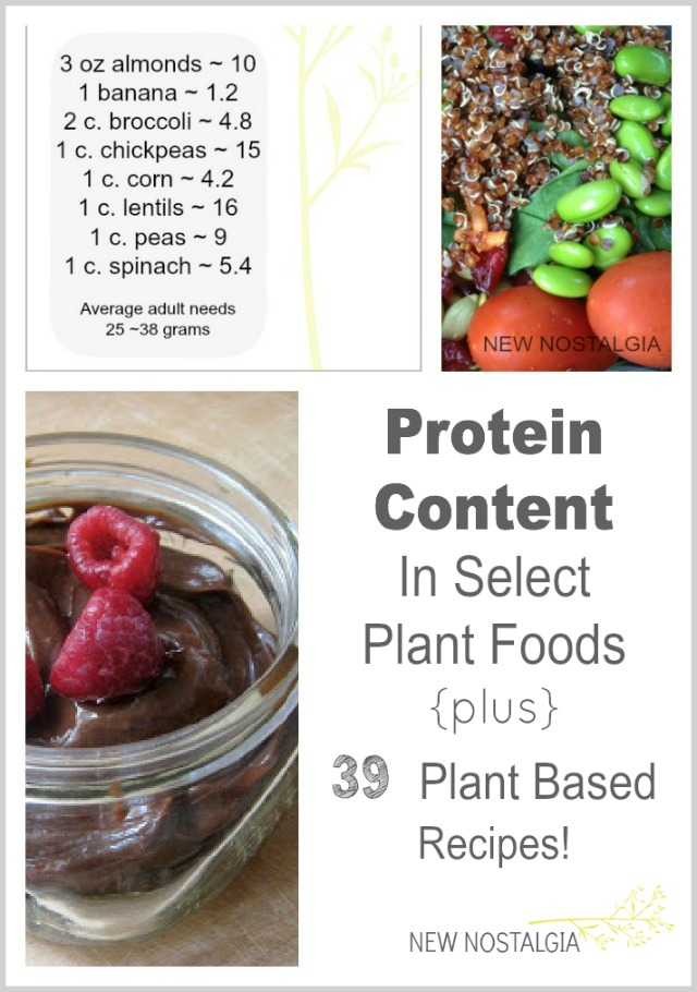 PicMonkey-Collage-Plant-Protein