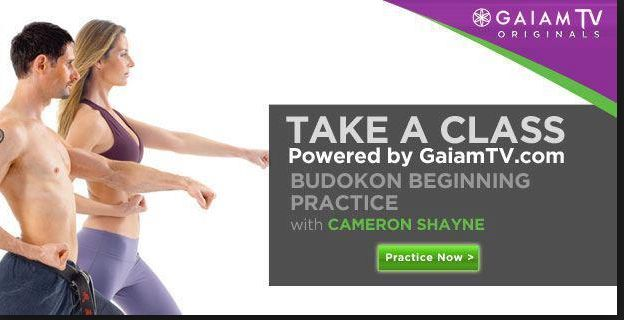 Gaiam Tv ad