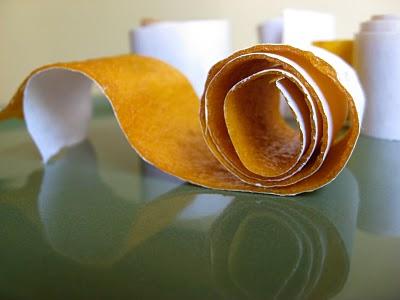 orange homemade fruit roll up