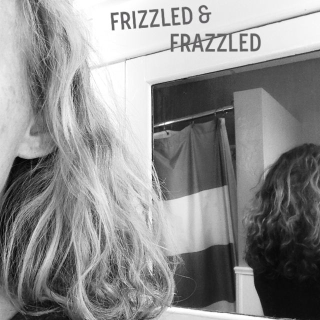 frizzy, before treatment hair