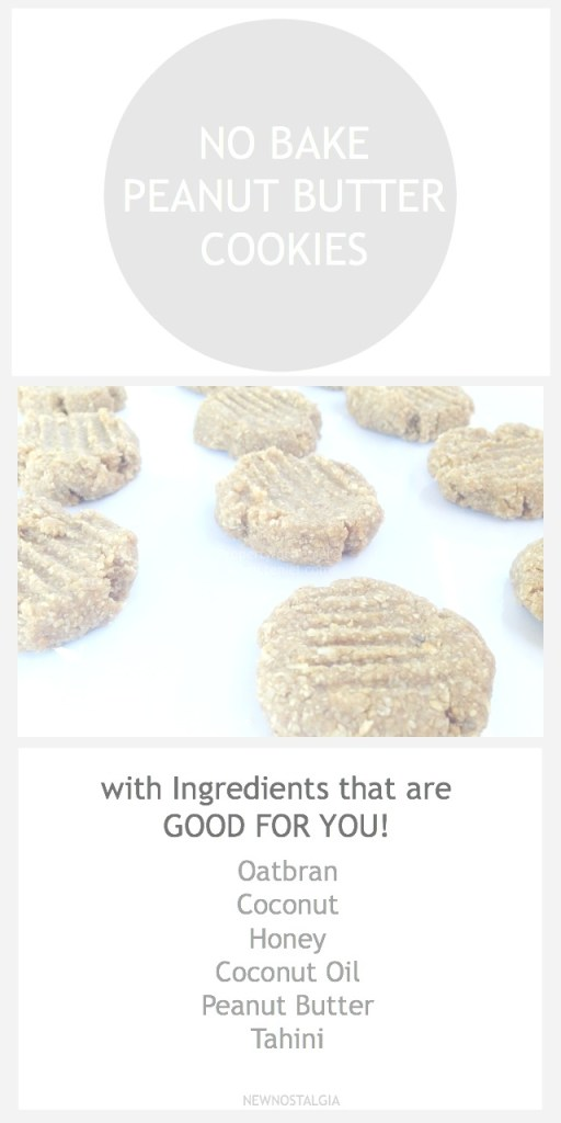 NO BAKE PEANUT BUTTER COOKIES 2