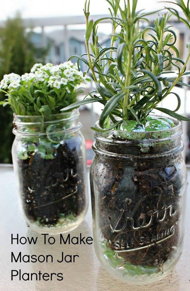 Plants-In-Mason-Jars