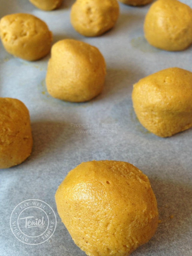 Teniel-Moore-Sugar-Free-Sweet-Potato-Choc-bites-1-WATERMARKED-011014