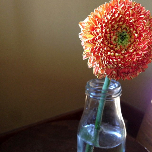 How To Divide A Flower Bouquet To Add Spring Color Throughout Your Home