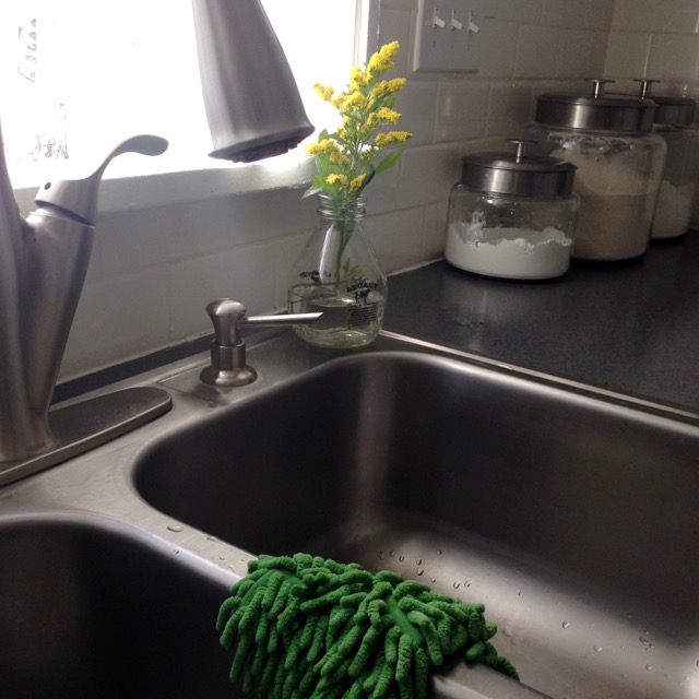 sink-flower