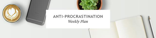 Anti-Procrastination Weekly Update