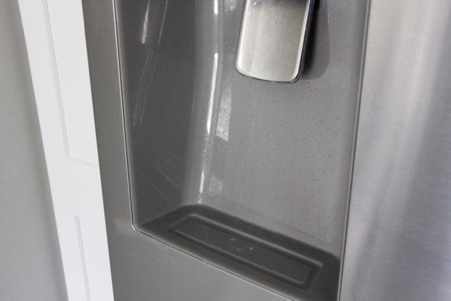 cleaning-ice-dispenser