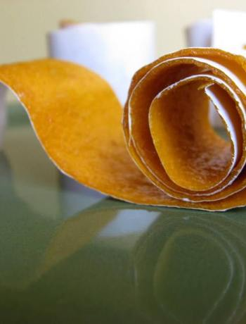 DIY Peach or Apricot Roll Ups