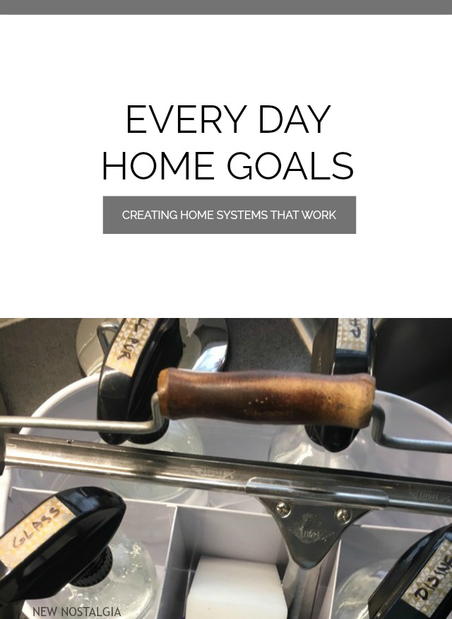 Every Day Home Goals Chore System