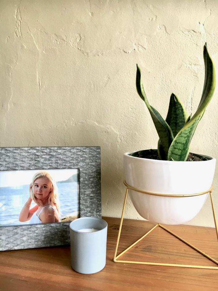 Photograph of a senior and geometric planter