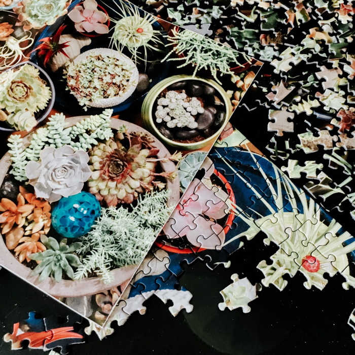 succulent puzzle on a table