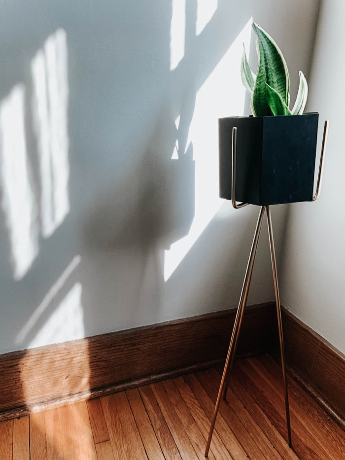 Sunroom refresh, spray painted plant stand from Facebook Marketplace