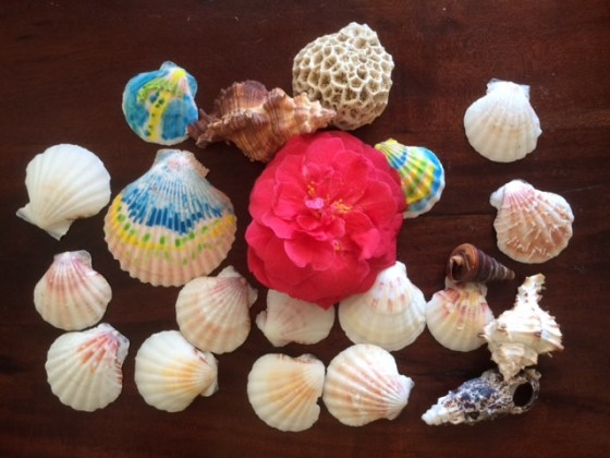 Painting Seashells is a fun and easy way for kids to be creative and work on patterns.