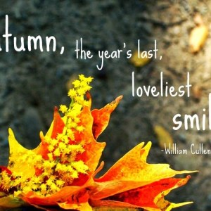 35321-Autumn-Quote