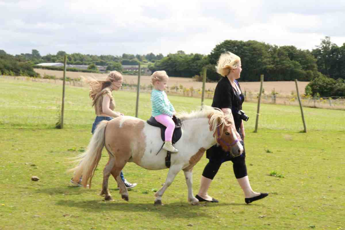 Two girls being led on a pony