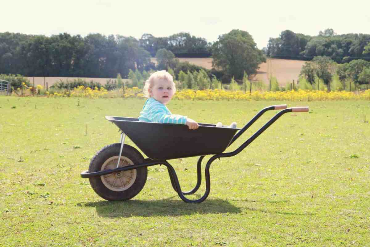 Baby sitting in a wheelbarrow in the middle of a field