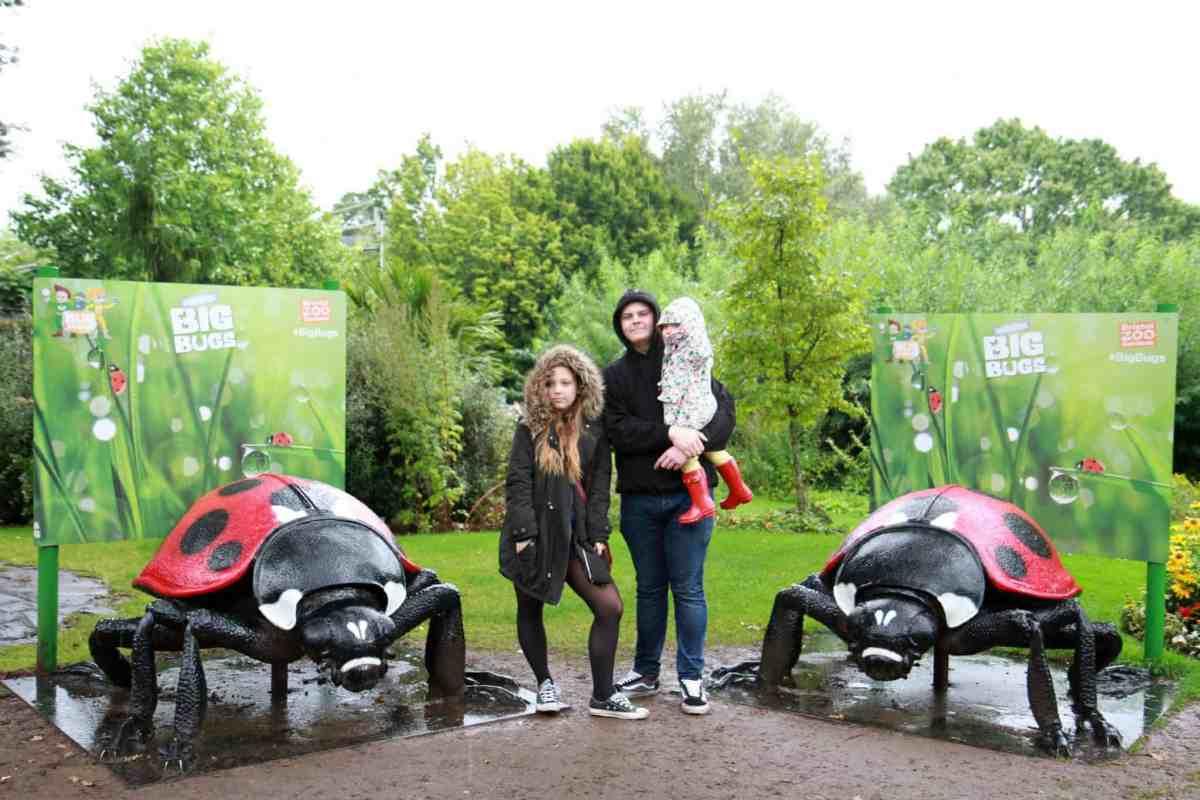 Bug exhibit at Bristol Zoo
