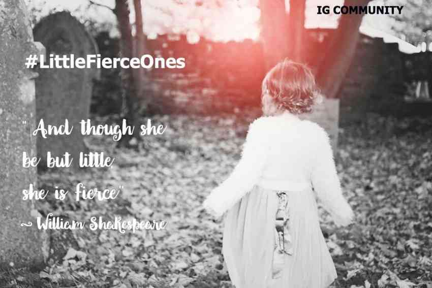 Little Fierce Ones FEATURED