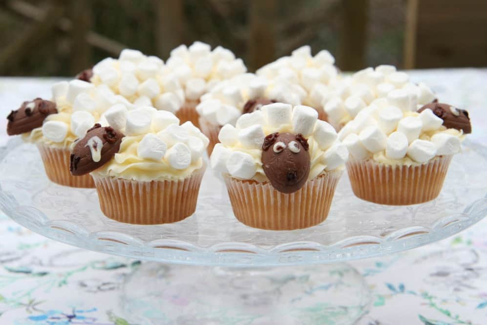 Spring sheep cakes made from iced cupcakes and topped with mini marshmallows and a small creme egg for a face