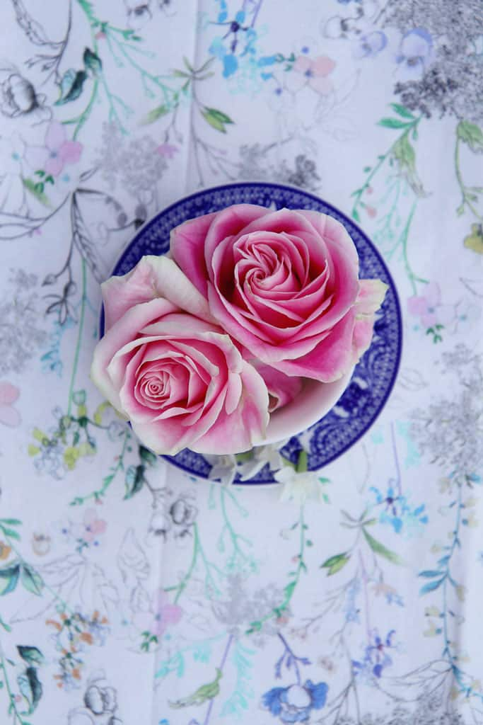 Fresh roses displayed in a teacup