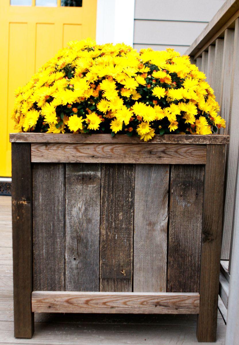 Outdoor Cedar Planters